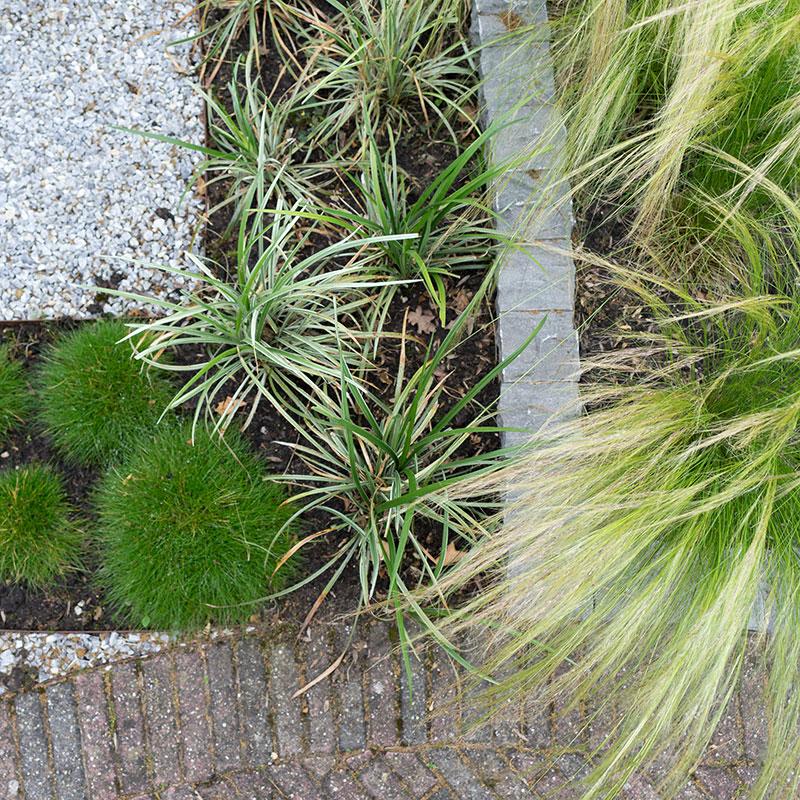 Nieuwegein-trendy voortuin in organische vormen